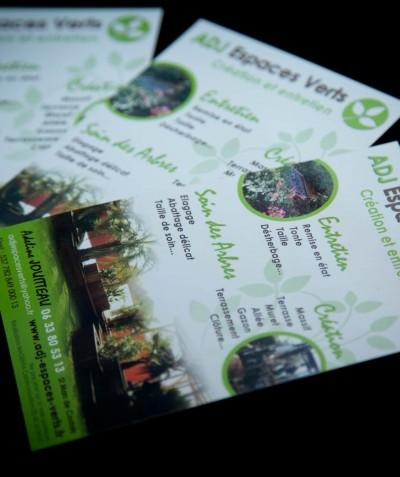 ADJ Espaces Verts - création de jardins et soin des arbres - Elagage des arbres près de Bouaye