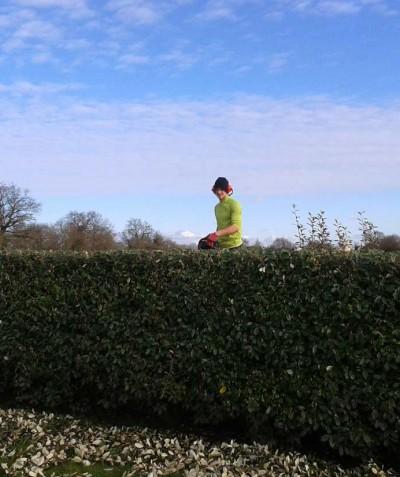 Paysagiste taille haie à Saint mars de coutais - ADJ Espaces Verts